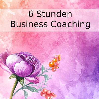 Seelenschimmer, 6 Stunden Business Coaching