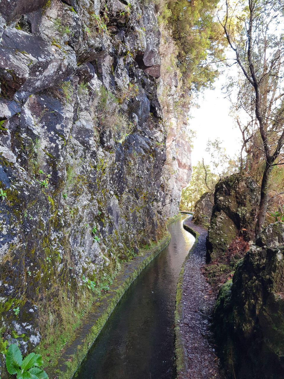 Seelenschimmer, Madeira, Levada